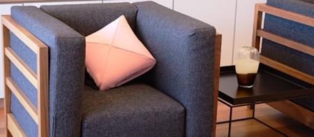 msg-Cushion04