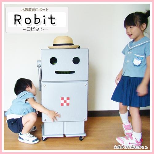 robit-main2
