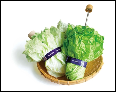 vegetabrella-05