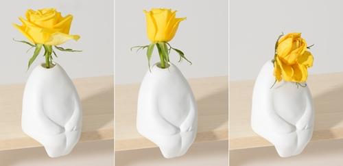 flowerman-03